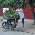 Cam siêu rẻ tràn phố Hà Nội